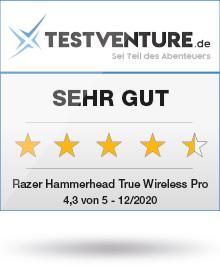 Razer Hammerhead True Wireless Pro Testlogo Testventure